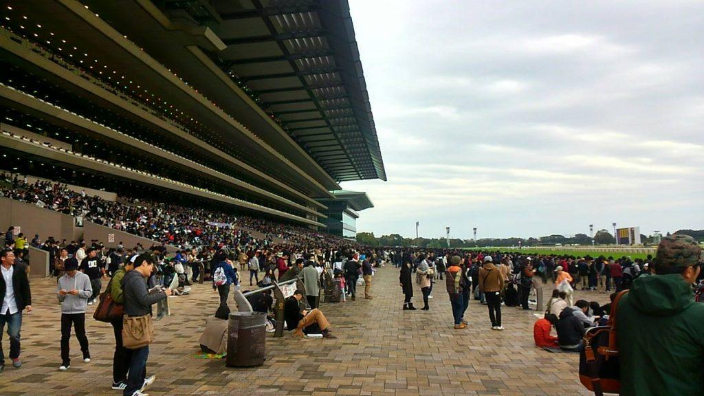 東京競馬場は日本一大きな競馬場だ