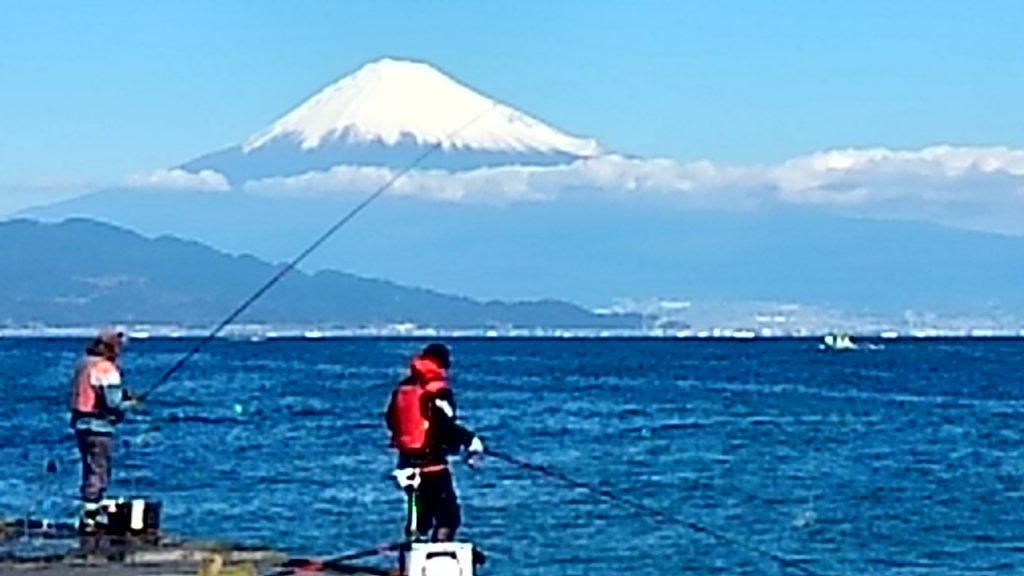 三保の松原から富士山を見る